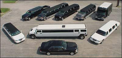 Dati azienda : Servizi e depositi riferimenti limousine