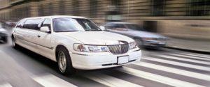 servizi limousine milano como varese novaraluino (44)